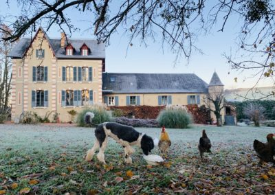 chateauanimals
